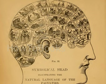 How To Read Character illustrated Handbook of PHRENOLOGY and PHYSIOGNOMY
