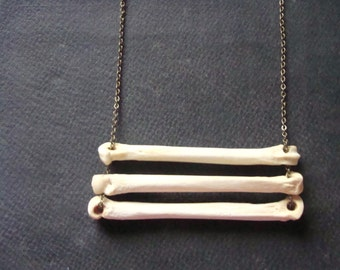 Animal Bone Necklace, Coyote Bones, Tribal Necklace on Long chain