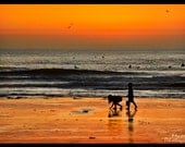 Beach Photography - Children, Shells, San Diego, California, Tourmaline, Beach, Sunset, Orange, Yellow, Sky, Surf, Surfing, Kids, Sea Shells