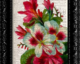 Vintage Flowers 8 - Vintage Dictionary Print Vintage Book Print Page Art Upcycled Vintage Book Art