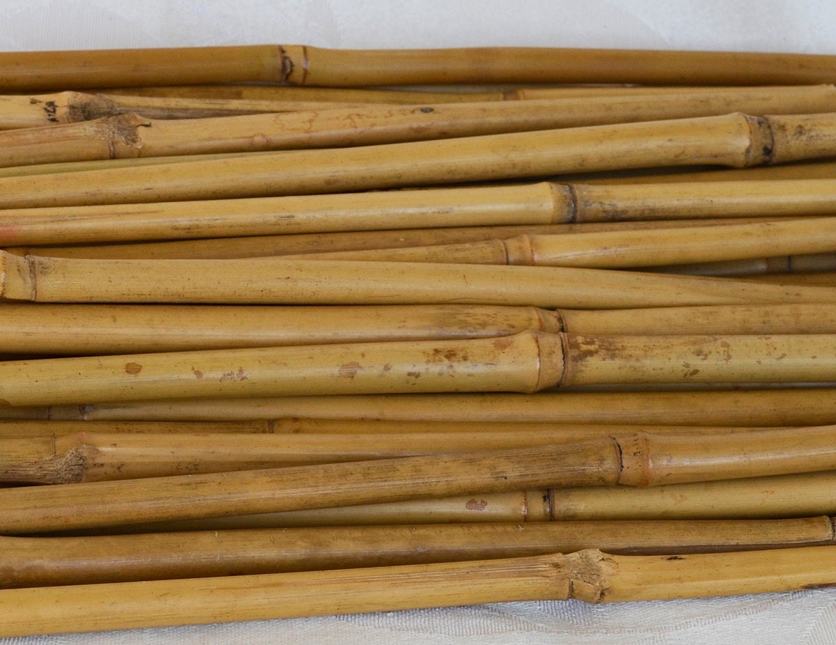 Bamboo sticks all natural dried