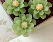 18 mm Apple Green Colour Resin Marigold Flower (.ag)