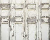 7ft x 5ft Vinyl Photography Backdrop  / Peeling Door / Grunge Wall