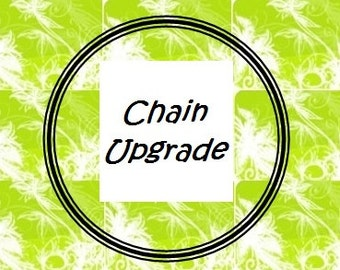 "Upgrade to a Stainless Steel Ball Chain 20"" to 24"""