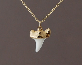 Tiny Gold White Shark Tooth Necklace