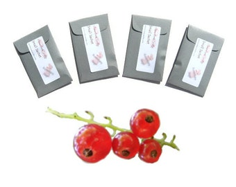Red Currant Scented Mini Sachets, Handmade Fresh Drawer Fresheners, Room Home Fragrance, Red Grey Minimalist Modern Decor