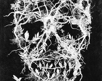 Skull tree,digital print,poster,original art,birds,black and white,horror,gothic,original art,wall decor,gothic art,illustration
