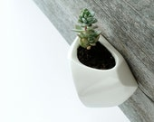 White Wall-hanging planter