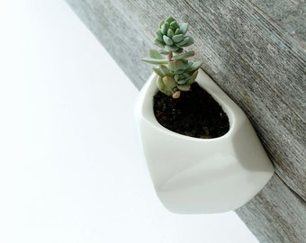 White Wall-hanging planter