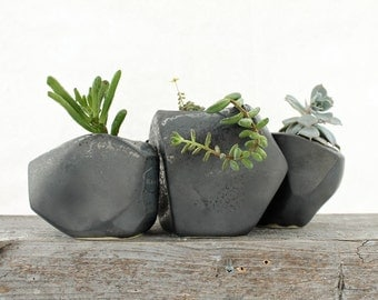 Succulent Rock Trio Planters in Black