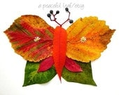 Leaf butterfly photo 8x10. Fall leaves collage. Nature inspired wall art. (e1004)