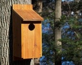 Screech-Owl House - by HOOT