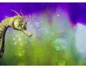P64 - Seahorse Blank Notecard / Postcard