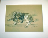 1936 'Mac' Lucy Dawson Welsh Springer spaniel vintage signed mounted dog plate print Unique Christmas birthday Thanksgiving Congrats gift