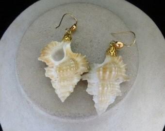 Vintage Plastic Realistic Sea Shell Dangle Earrings