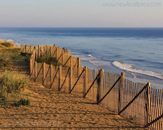 Cape Cod beach photo, dune fence beach art, coastal wall art, beach house decor, blue and brown 'Cape Cod Morning'