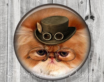 Steampunk Cat Pocket Mirror, Cat Photo Mirror, Compact Mirror Illustration Image of Persian Himalayan A85