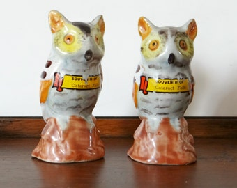 Vintage Owl salt and pepper shakers, Souvenir of Cataract Falls, 1960s