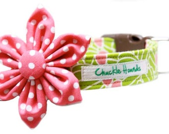 Lilly Collar SET - perfect for pet photography - cute collar and flower
