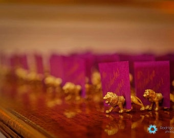Indian theme escort cards - Gold place cards - 50 magnets (25 full animals) pink and gold wedding