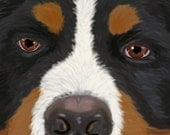 Title: Eyes of love (bernese mountain dog)  signed by artist print 13x19  dog breed print