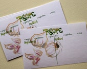 """Garlic 3""""x5"""" Recipe Cards - Set of 12 - Watercolor Drawing Illustration Hand-Lettering"""