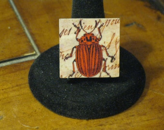 Red and Black Striped Beetle on French Handwritten Letter Mirror Tile Adjustable Ring