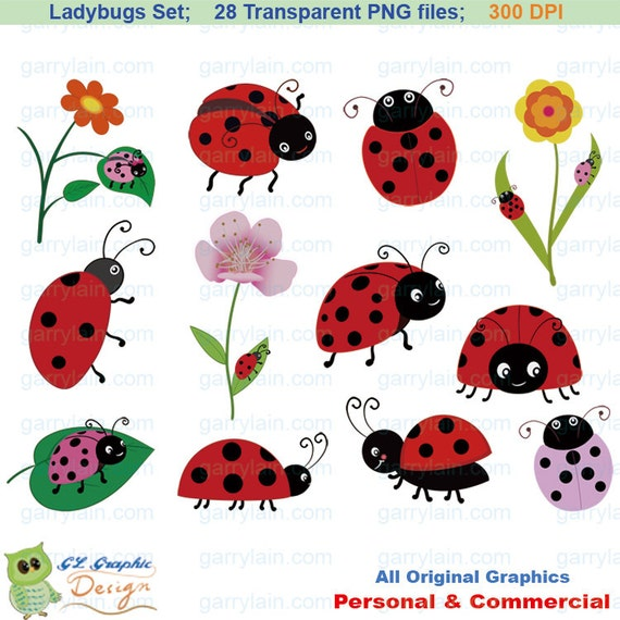 Items similar to Ladybug clipart, insect clip art set ...
