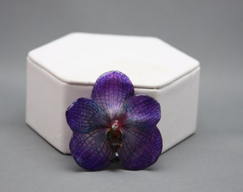 Real Vanda Orchid Hairclip or Brooch
