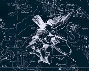 Constellation of Aqvila, Constellation print, Constellation, Star, Constellation of Aquila, 06