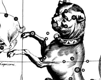 Star, Constellation of Canis Major, Constellation, Constellation print, 33