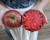 Heirloom, Cherokee Tomato, Dark Purple, Grown on Our Farm, 10 Seeds