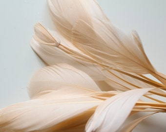 """Light Peach Stripped Goose Nagoire Feathers 4""""-6"""", 10 feathers"""