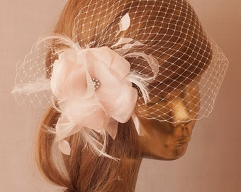 BIRDCAGE VEIL with Pale Pink Flower and Rhinestone Brooch.Fascinator with Veil