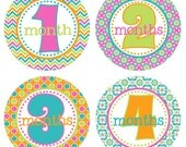 Baby Month Milestone Stickers Month by Month Stickers Newborn Monthly Sticker Girl Baby Shower Gift Baby Accessories Baby First Year BMST002