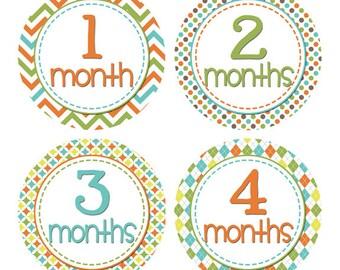 Baby Month Milestone Stickers Newborn Monthly Stickers Month by Month Stickers Boy Baby Shower Gift Monthly Sticker Set 1-12 Months BMST013