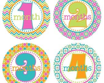 Baby Month Milestone Stickers Month by Month Stickers Newborn Monthly Sticker Girl Baby Shower Gift Baby Accessories Baby First Year BMST002