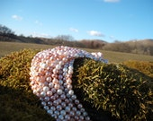 Round Shell Pearl Strand (mixed Colours as shown in picture)