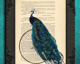 PEACOCK - peacock art print, mixed media, peacock home decor, peacock on bicycle print, peacock illustration on recycled book page