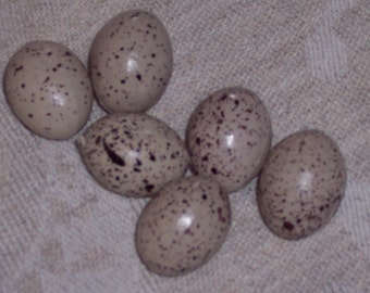 small speckled eggs,1 inch,plastic, 6/pkg, craft eggs,nest eggs,floral decoration,wreath embellishment,Darice Birds