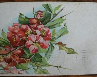 vintage POSTCARDS ... Floral SPRAY Red stamped 1909  ...