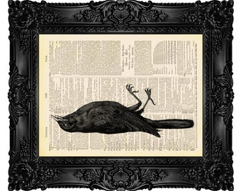Dead Bird - ORIGINAL ARTWORK -Dictionary Art Print Vintage Upcycled Antique Book Page no.323