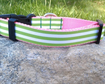 Preppy Stripes Dog Collar