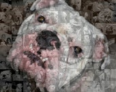 English Bulldog Personalized Photo Collage Mosaic - Dog Wall Art of Your Bully (10x10 or 8x10 inch)