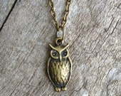 wise owl. an owl charm necklace.