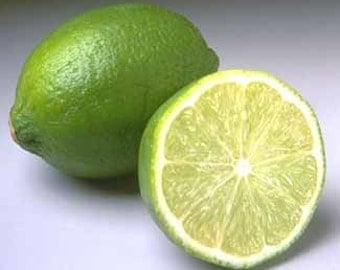 1/2 Ounce Lime Essential Oil