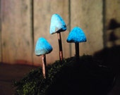 Miniature Mushrooms Raku Fired Glow in the Dark Terrarium Accessories-Handmade by Gypsy Raku
