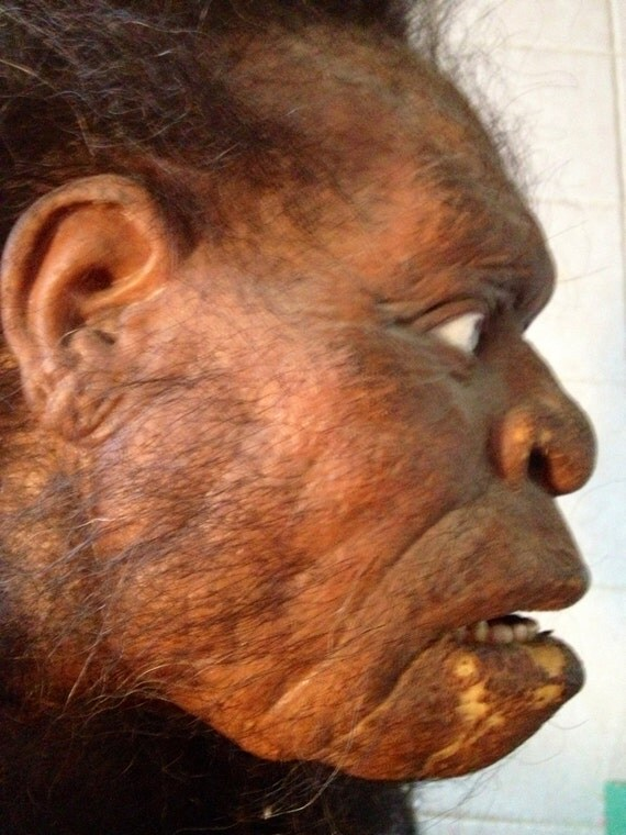 Old Caveman Show : Awesome old caveman movie prop plus herters by