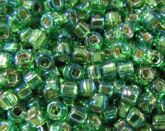 Rainbow Lime Seed Beads, 6/0 Seed Beads, 10 grams Seed Beads, Rainbow seed beads, Green Seed Beads, LIme Beads, Japanese Beads 5869 Item#209