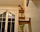 20% off The KittyOverload, Set of 8 Red Oak & Black Walnut Hardwood Cat Shelves